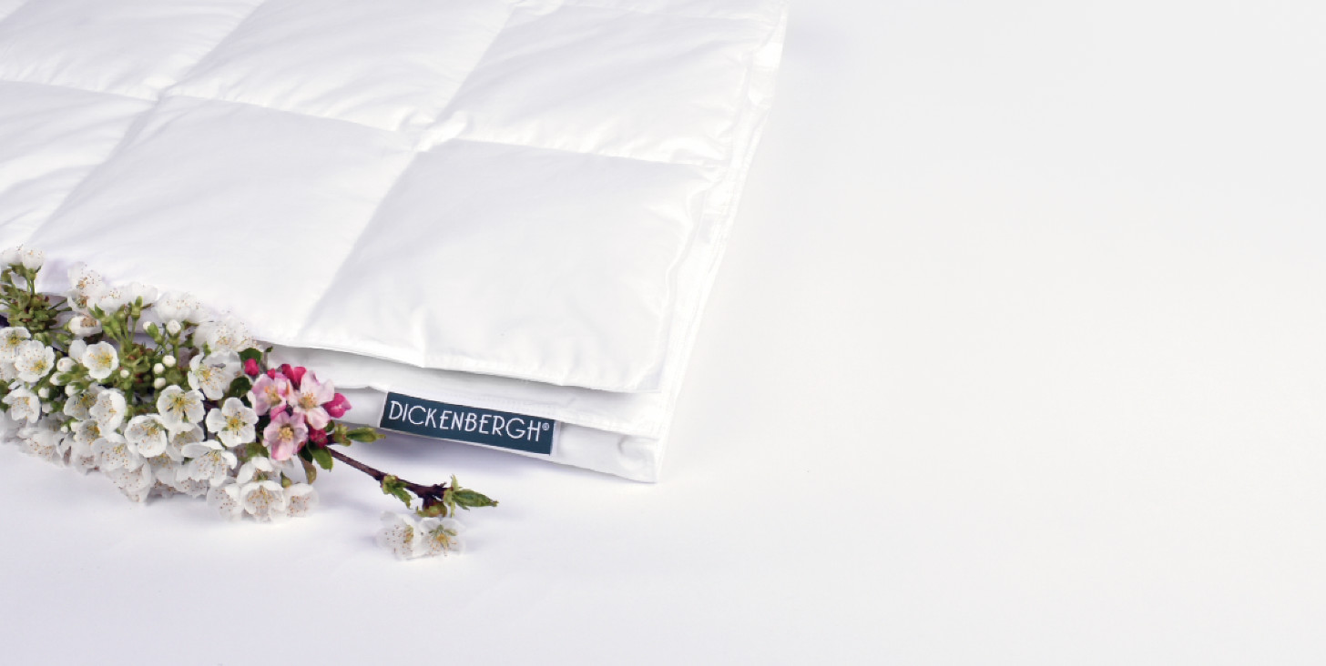 Dickenbergh down comforters offer 20% discount
