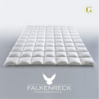 Down Duvet Falkenreck Gold Edition Summer